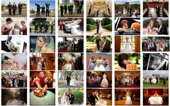 Weddings (WEDDINGS-EXAMPLES-003)